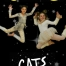 Cats Poster
