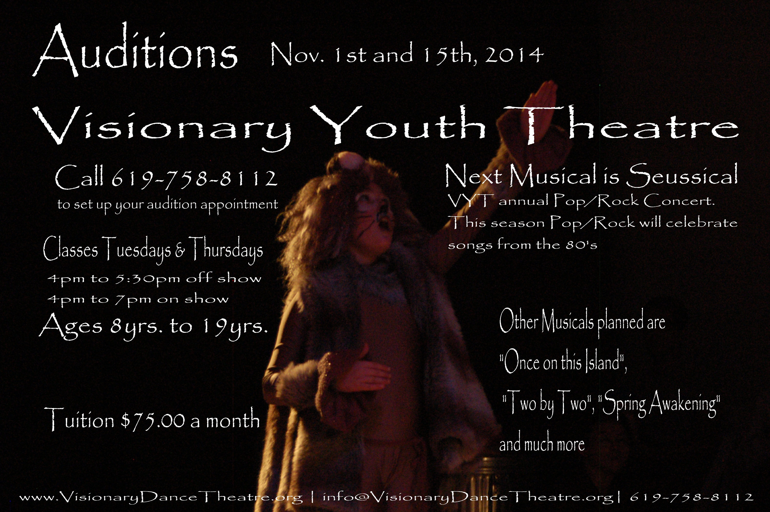 Auditions_2014_VSPA_VisionaryYouthTheatre